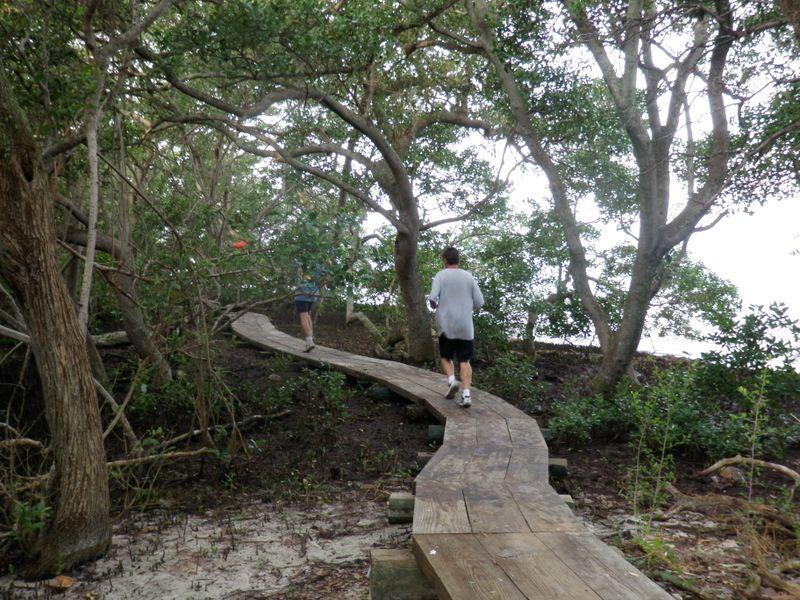 Tern boardwalk