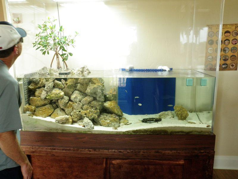 RP aquarium
