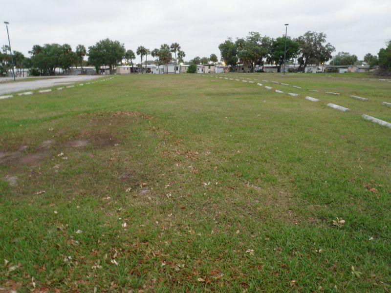 Grassy parking